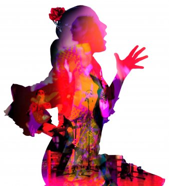 Jaleo Flamenco-A Compas