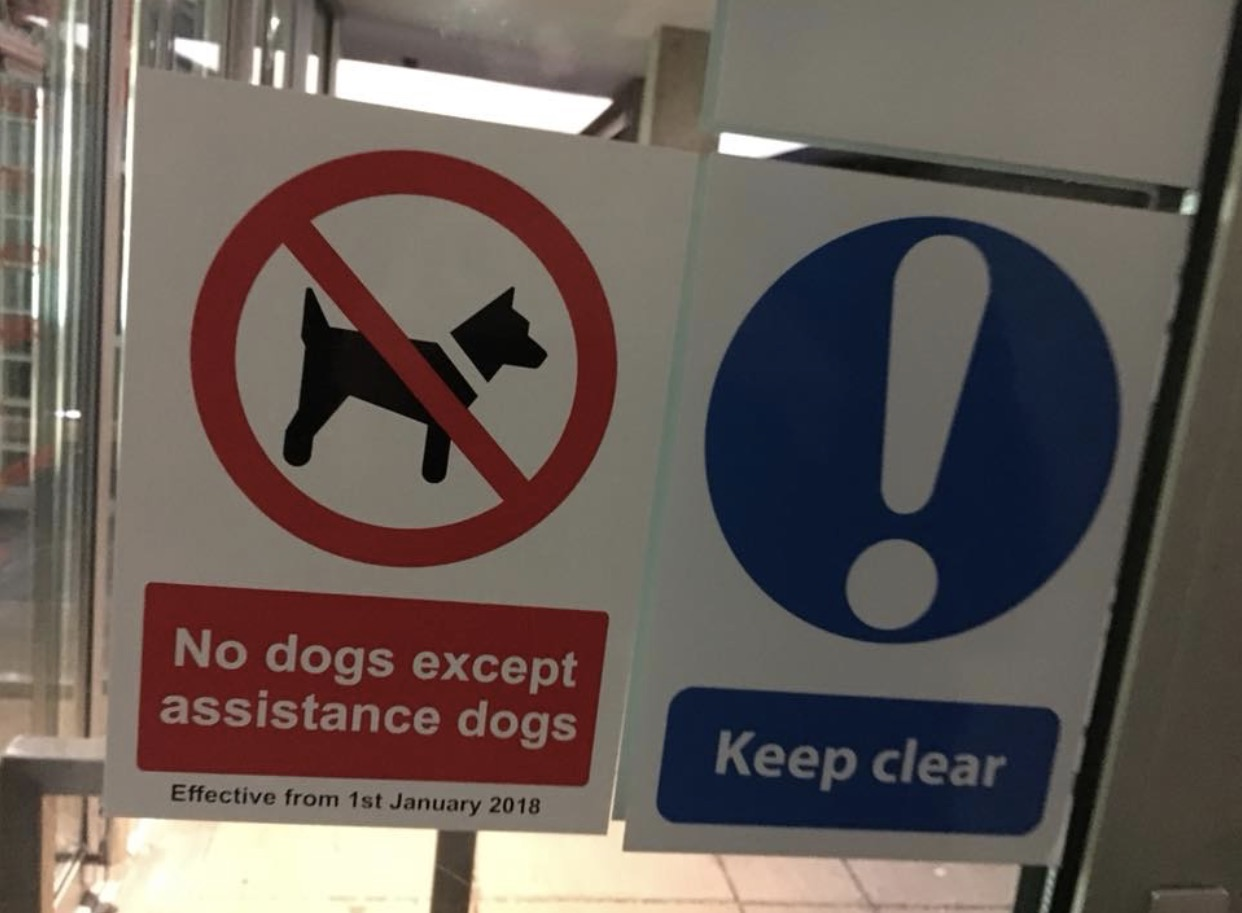 dog ban photo