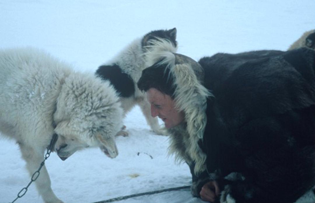 arctic benedict allen