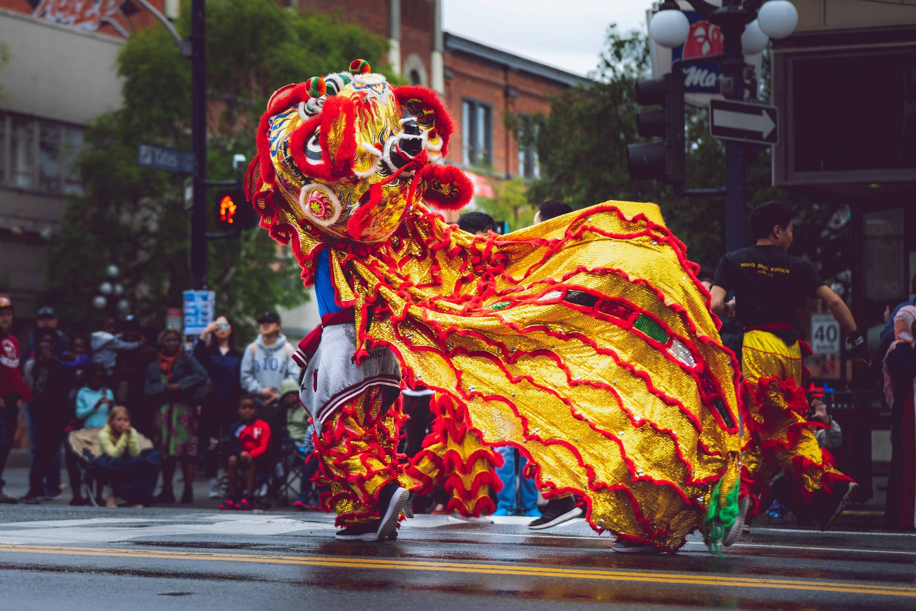 person wearing foo dog costume